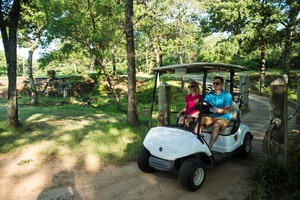 The Lake Murray State Park Golf Course has golf carts available for rental. The pro shop, which is part of Lake Murray State Park, also offers group and individual lessons.