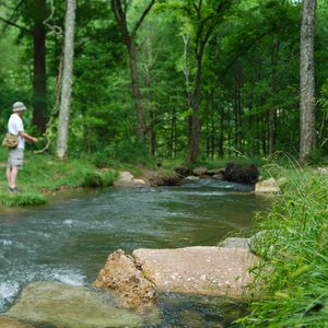 Many anglers travel to Beavers Bend State Park in Broken Bow to fish the Mountain Fork River.