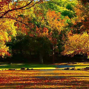 Muskogee's Honor Heights Park ablaze with fall color.