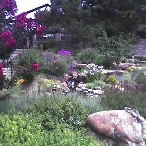 A springtime stroll uncovers beautiful landscaping and colorful blooms at the Linnaeus Teaching Gardens in Tulsa.