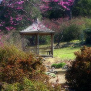 A gazebo offers a a scenic shady spot among the blossoms during the annual Azalea Festival at Muskogee's Honor Heights Park.
