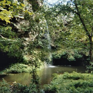 Natural Falls State Park is a lush green oasis beneath the cascade.  Located near West Siloam Springs in northeastern Oklahoma, the park features gorgeous scenery for visitors to enjoy.