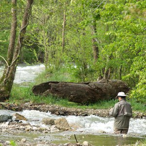 The Lower Mountain Fork River at Beavers Bend State Park attracts trout fisherman from around the country.