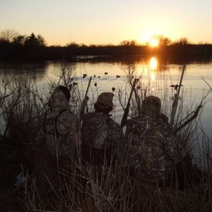 Stuart Ranch Outfitters offers one-of-a-kind hunting on 45,000 privately owned acres. From waterfowl to wild hog, hunters of every interest will find something at this expansive hunting ranch.