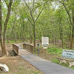 Take a relaxing hike on the nature trail. Begin at the trailhead and wind your way back around.