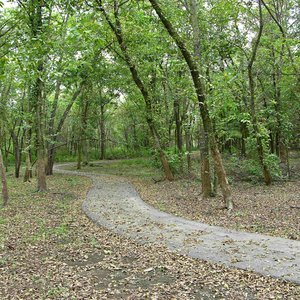 A portion of the nature trail next to the nature center.