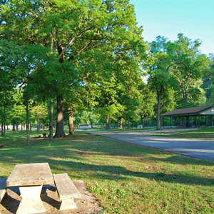 The road leading into the camping areas within Spavinaw Area at Grand Lake State Park.