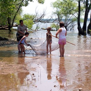 Park naturalist and children seining for minnows.