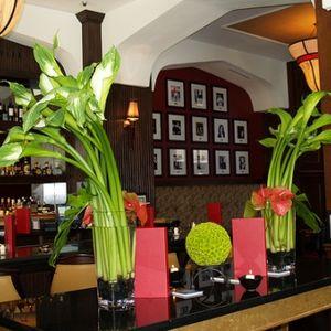Red piano lounge okc menu
