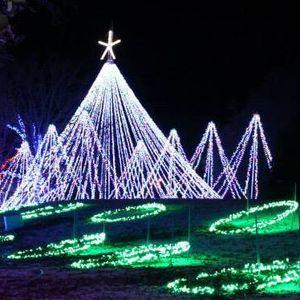 christmas lights norman ok