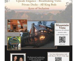 View Mountain Vista Luxury Cabin Flyer