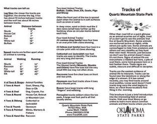 Wildlife Track ID Brochure