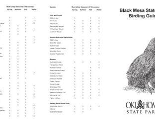 View Black Mesa Birding Guide