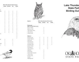 View Lake Thunderbird Birding Guide