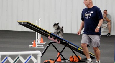 Tulsa Dog Training Club Agility Trial Travelok Com Oklahoma S