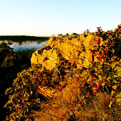 A morning fog rises among the Sans Bois Mountains at Robbers Cave State Park in Wilburton.
