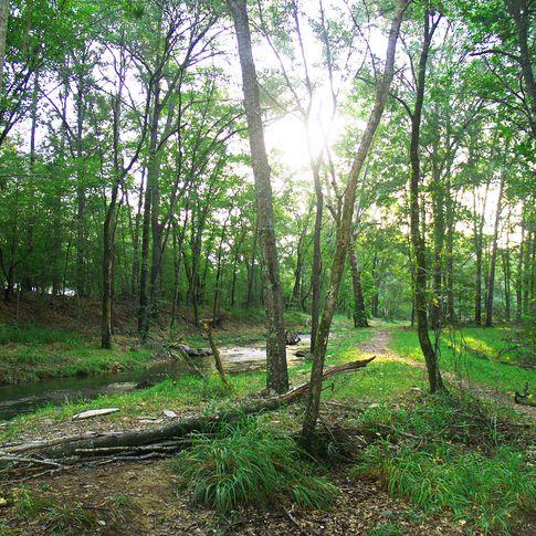 Follow the hiking trail alongside Lost Creek in Beavers Bend State Park.