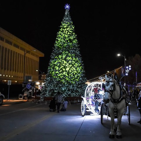 Embark on lighted carriage rides during Tulsa's Winterfest celebration.