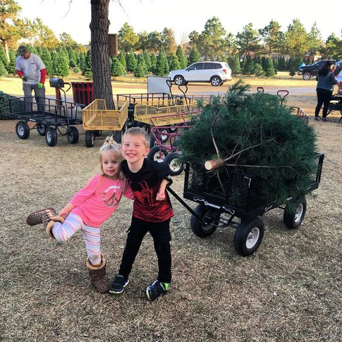 The kids are sure to love picking out the perfect tree at All Pine Christmas Tree Farm in Yukon.