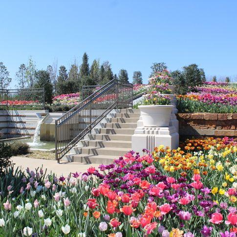 Enjoy a peaceful stroll through Tulsa Botanic Garden's colorful landscapes.