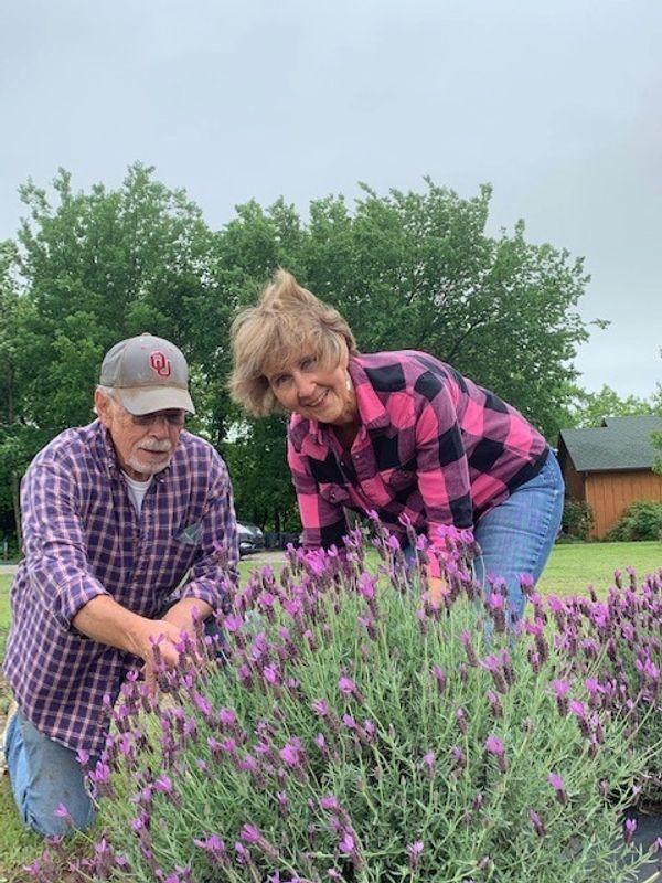 Lakeview Lavender Farm Travelok Com Oklahoma S Official Travel Tourism Site