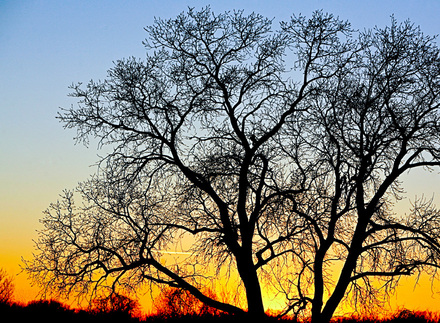 Spectacular sunsets are just one of the many winter attractions at Great Salt Plains State Park near Jet.