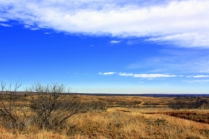The rugged, wild country at the Sandy Sanders Wildlife Management Area, near Erick, is a natural haven for bobcat, deer and many species of birds.