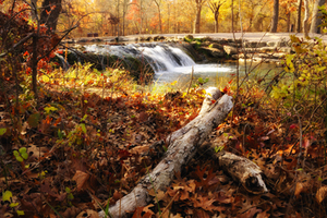 This peaceful scene entices hikers to pause for a moment and soak in the gorgeous fall scenery at the Chickasaw National Recreation Area in Sulphur.
