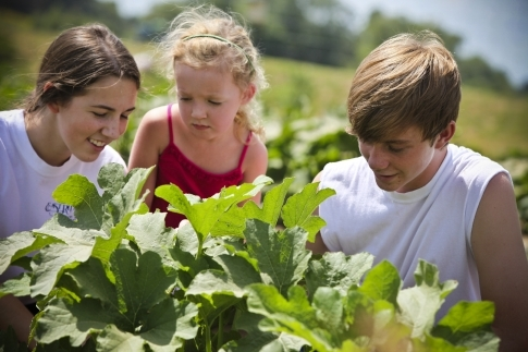 A trip to Wild Things Farm in Pocola is an adventure for the whole family.