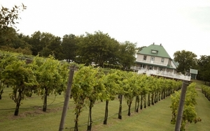 A charming bed and breakfast inn overlooks the picturesque vineyards of Indian Creek Village Winery & Village Inn in Ringwood.  Indian Creek offers a romantic countryside escape with gourmet meals, wine tastings and peaceful surroundings.
