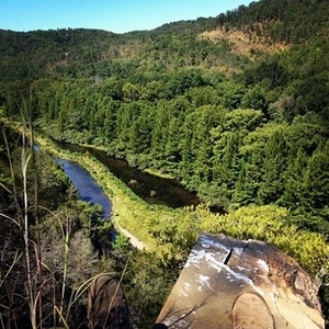 The Lower Mountain Fork River Offers Year Round Trout Fishing Throughout A  12 Mile Portion Of Lower River, As Well As Its Tributaries From The Broken  Bow ...
