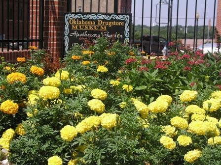 TravelOK.com - Oklahoma\'s Official Travel & Tourism Site