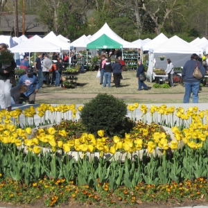SpringFest Garden Market U0026 Festival In Tulsa Is A Celebration Of Gardening.  This Event, Held Annually At The Tulsa Garden Center, Will Have Experts On  Hand ...