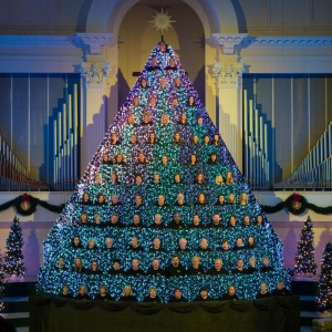 get in the holiday spirit with a trip to lawtons living christmas tree standing at 39 feet tall and comprised of thousands of computer controlled lights