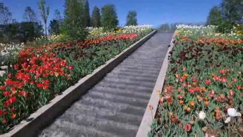 tulsa botanic garden video - Tulsa Botanic Garden